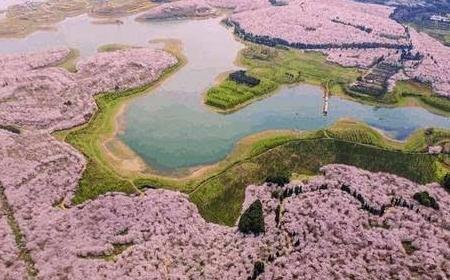 【贵州】黄果树瀑布双动四天之旅