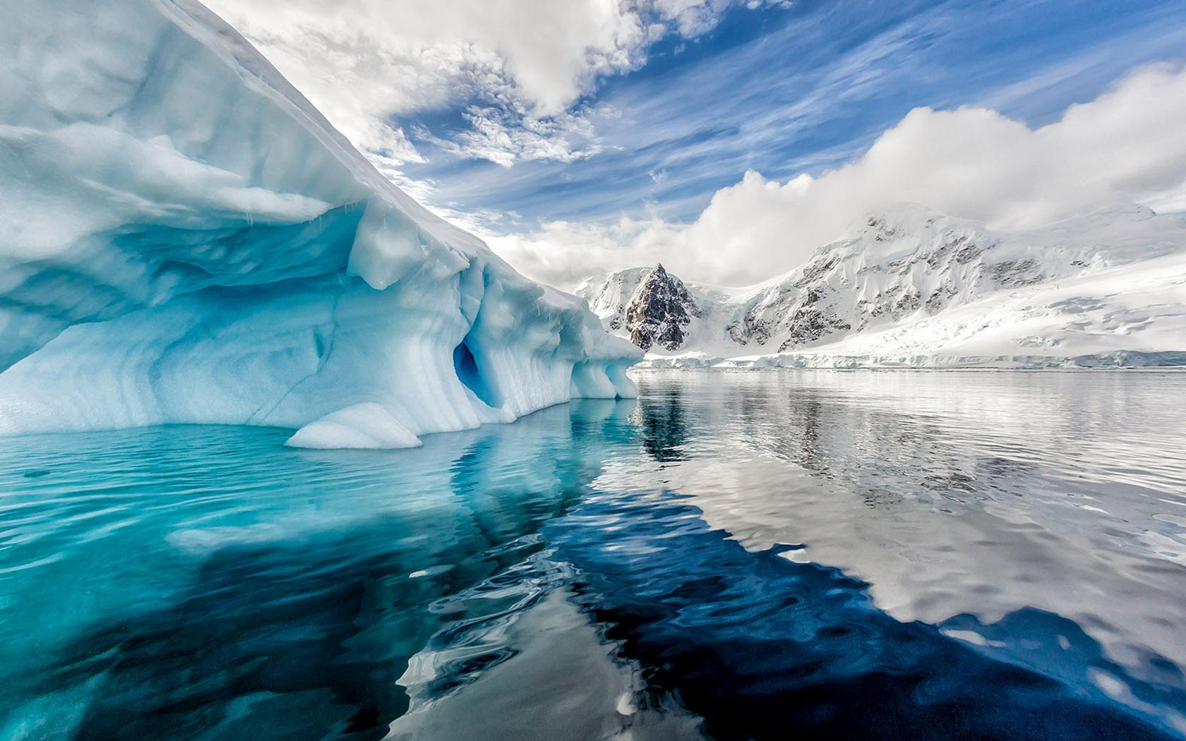 【南极】[海钻石邮轮]中国人包船南极四岛王企鹅群摄影巡游 22天团