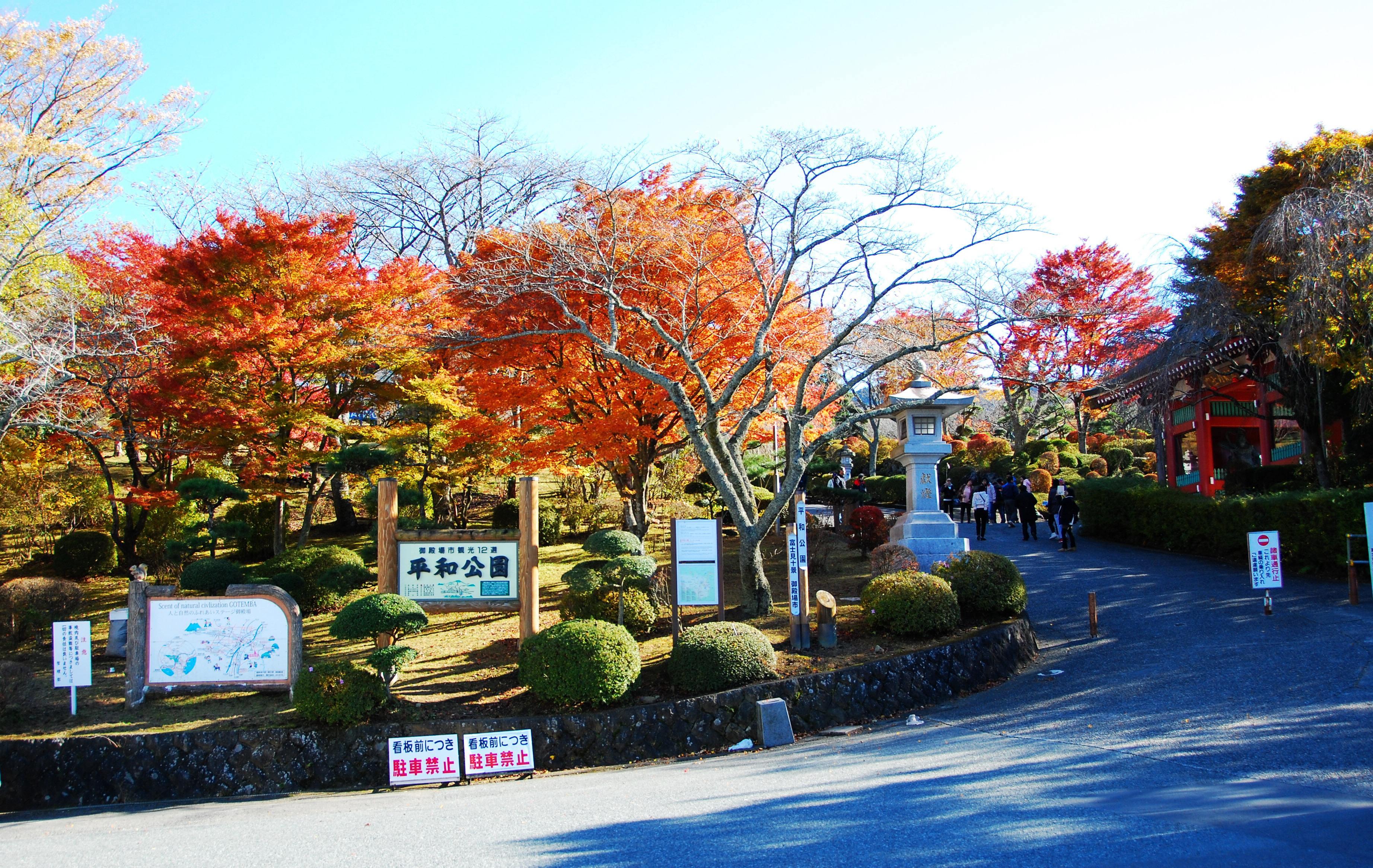 【日本】本州浪漫芝樱 纯玩半自助六天畅享之旅
